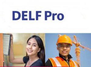 آزمون delf pro